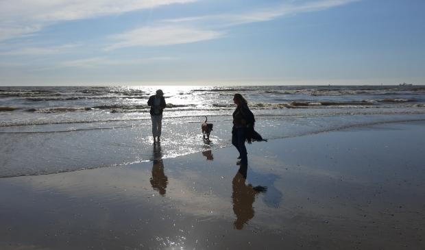 <p>Lekker wandelen met de hond op het strand kan vanaf vandaag weer overdag.</p>