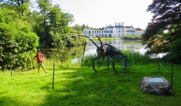 Big Insects in de achtertuin van Paleis Soestdijk, hier met een Alpenboktor