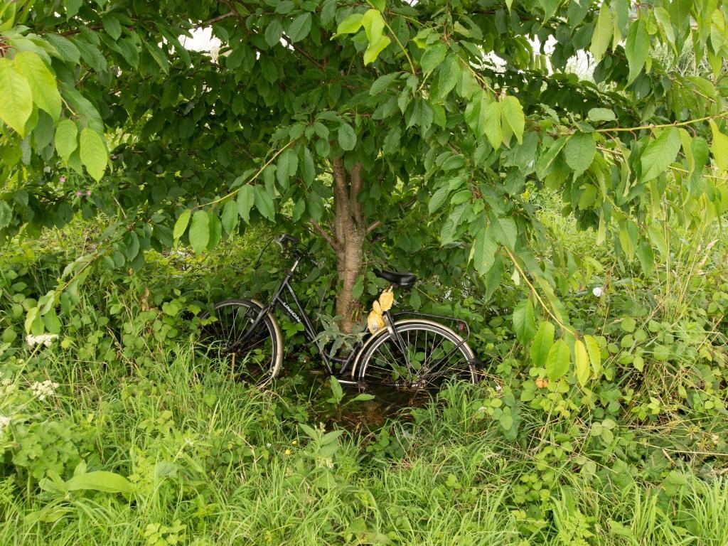 Iemand is zijn fiets vergeten. Arie Jan van Termeij © BDU media