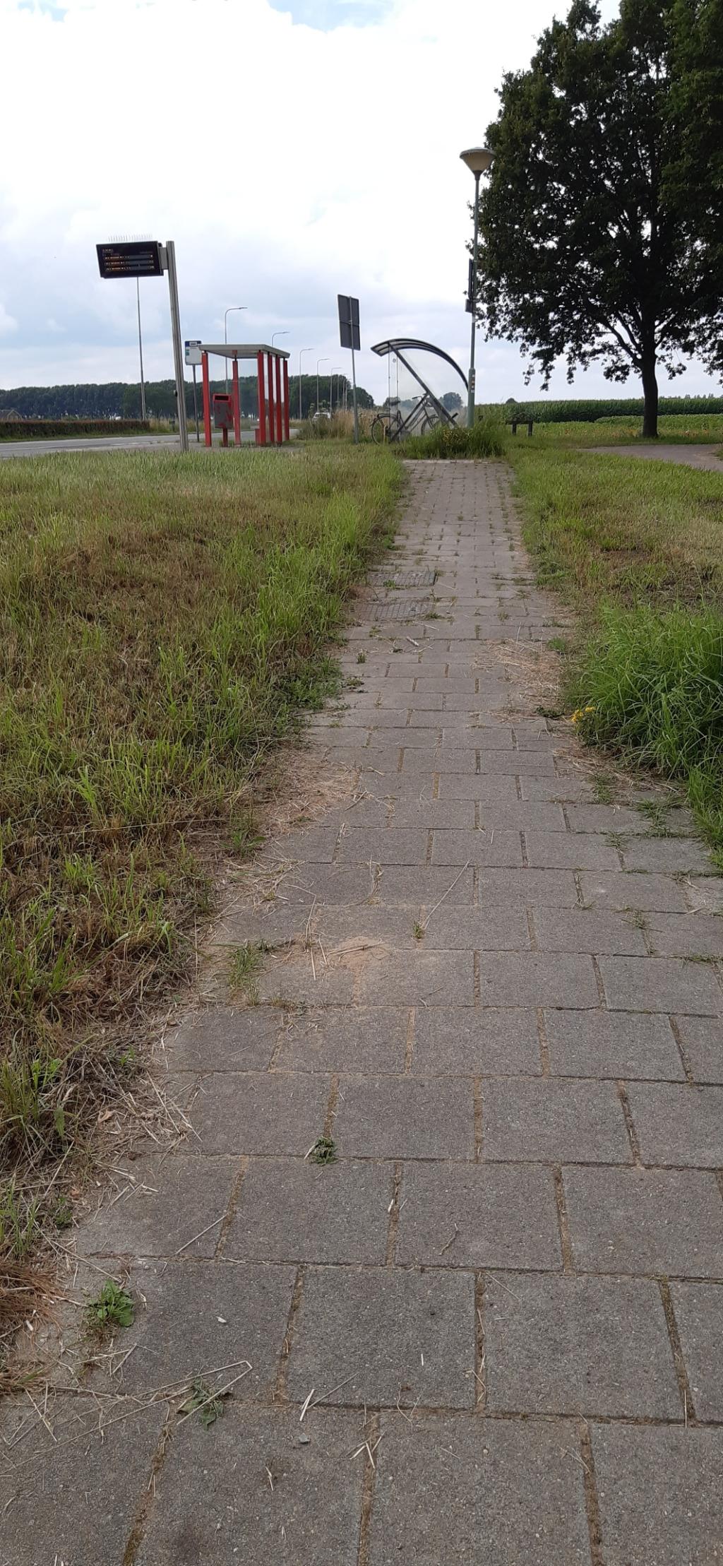 Ook dit pad tussen tunnel en bushalte kan verbetering gebruiken Kuun Jenniskens © BDU media
