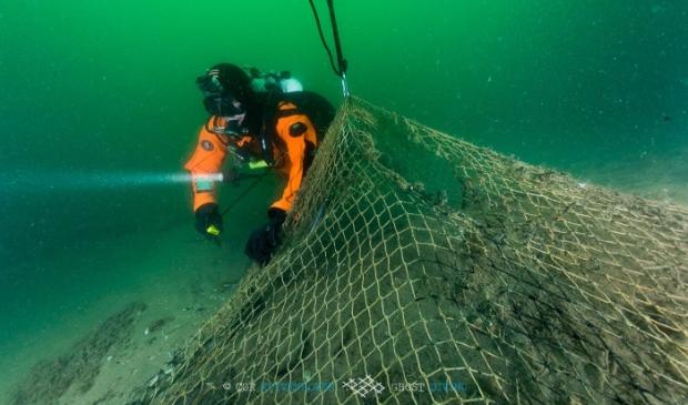 Duiker die de netten opruimt. Aangeleverd © BDU Media