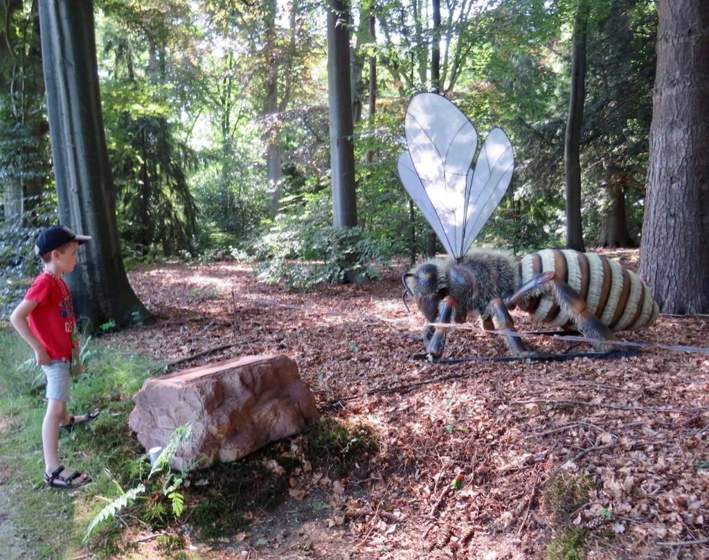 Er staan ongeveer 40 enorme Insecten in het park Onno Wijchers © BDU media