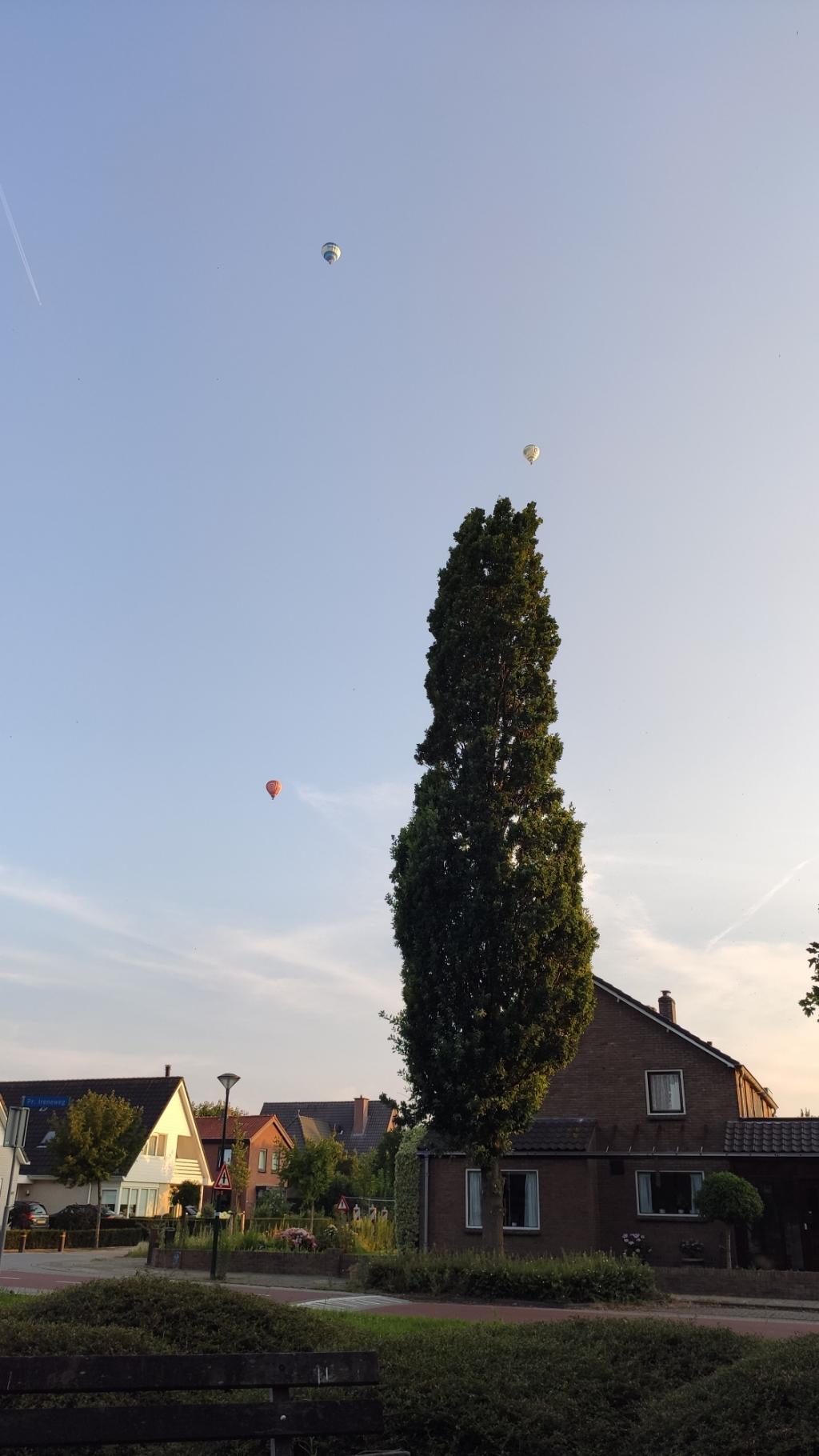 Luchtballonnen in de avondzon Alexei Cherenkov  © BDU media