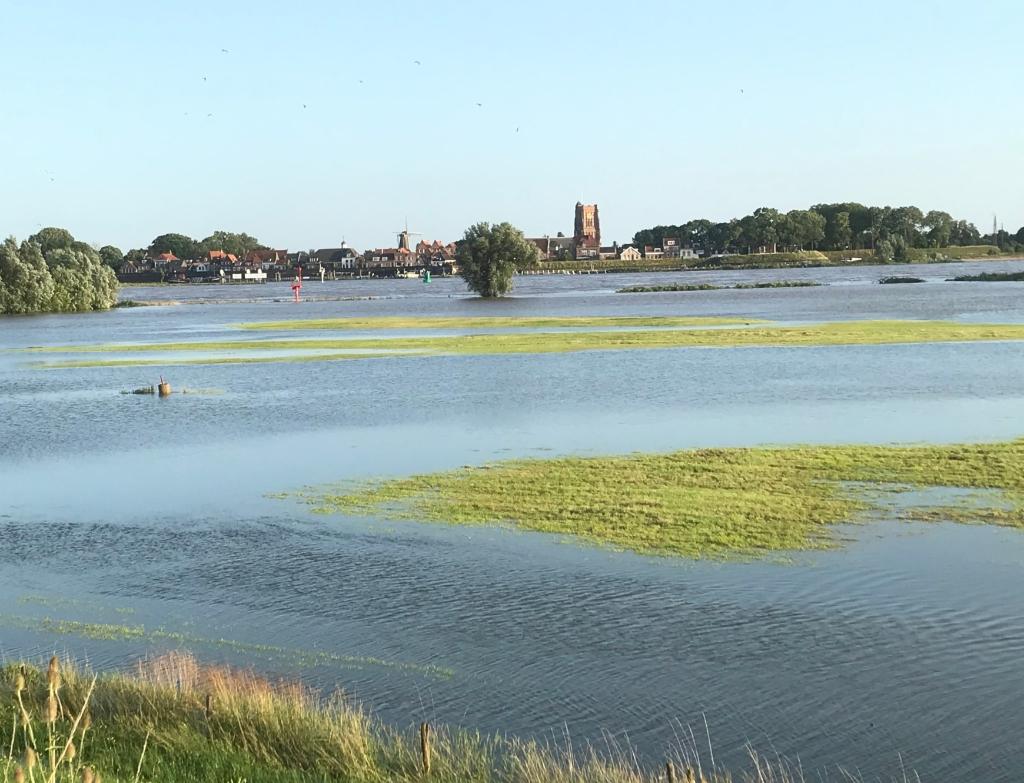 Volgelopen uiterwaarden maken de rivier extra breed, aan de overkant ligt vesting Woudrichem Hannie Visser-Kieboom © BDU Media
