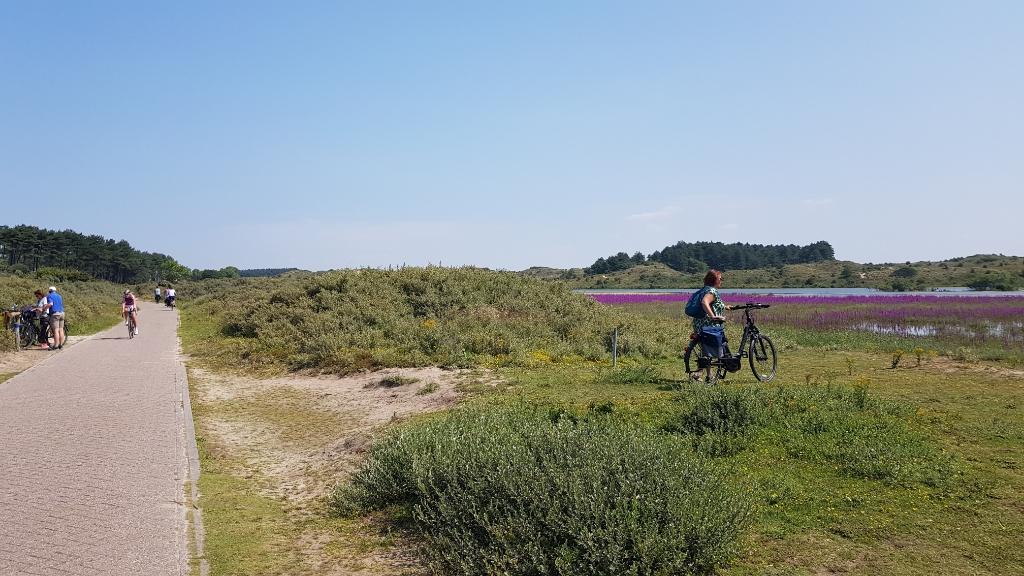 Veel fietsers stoppen even bij het vogelmeer om van de stilte en schoonheid te genieten. Mariëlle Tukker © BDU Media