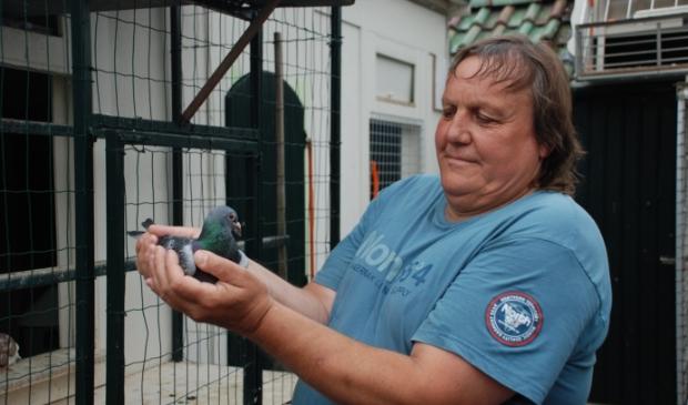 <p>Winst voor (de duiven van) Marcel van de Hoef.</p>