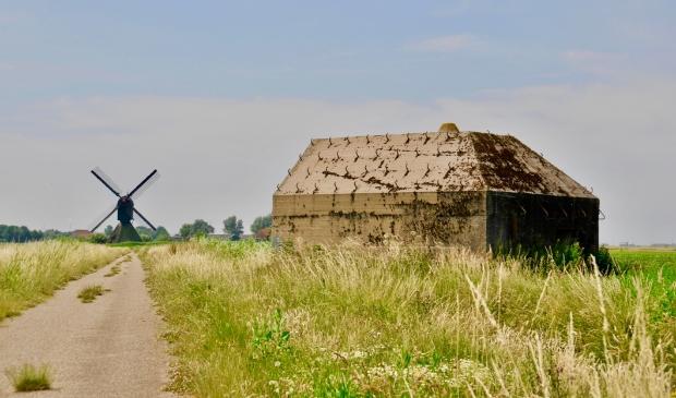 Ed23 langs het wandelpad tussen De Roef en de Uppelse Steeg.