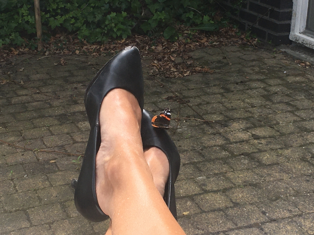 """,,Deze foto is gemaakt in de eigen tuin op 25 juli. Ik zit in de tuin en er is een vlinder op mijn schoen geland."""" Mw. Van der Eijck © BDU media"""