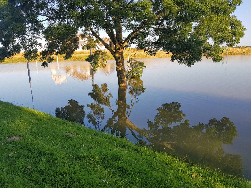 """,,17 juli 2021: Het was een warme zomeravond, heldere lucht, laaghangende zon en nagenoeg  windstil, een geweldig moment om de omgeving in je op te nemen. Deze boom viel mij in het bijzonder op, 21 juni de valwind overleefd. De takken hangen nog naar beneden. Of het nog niet genoeg is een maand later geplaagd door hoogwater maar gelukkig heeft de boom het overleefd. In de weerspiegeling van het water is veel waar te nemen een prachtig plaatje met een kruin van de boom boven en onder het water ook zie je in het water dat de sluizen geopend zijn. Het is daar een fijne plek om te zijn helaas waren de bankjes 'bezet' door het water."""" Ton Baars © BDU"""