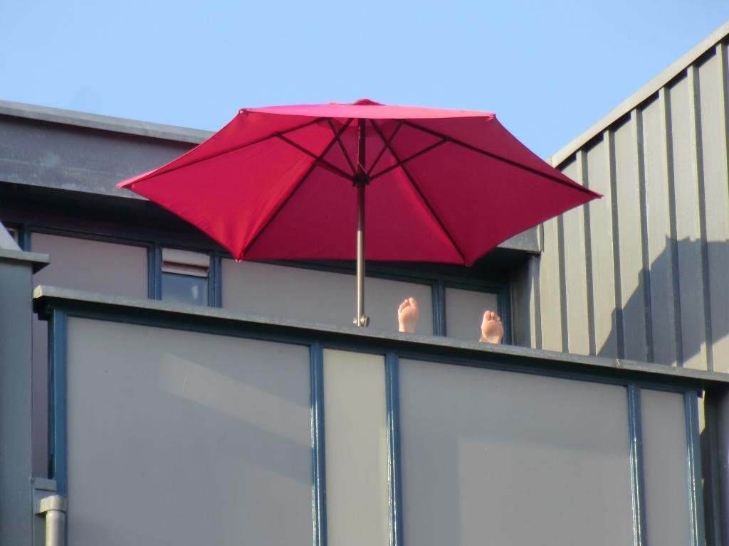 Gewoon lekker thuis op het balkon. Remco van de Kamp © BDU Media