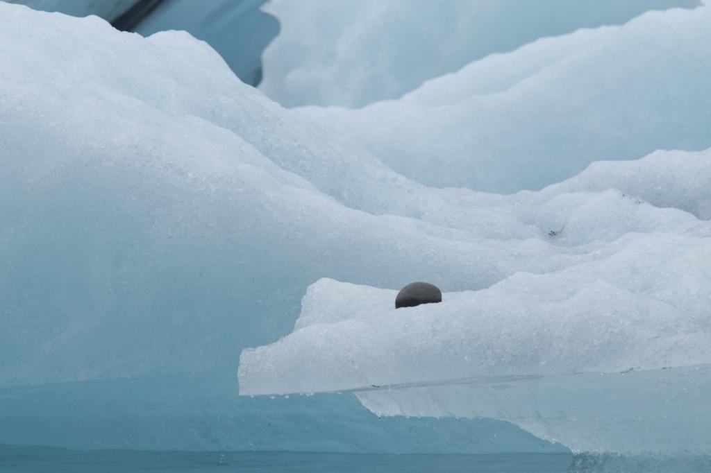 smeltend ijs Rob van de Bor © BDU media