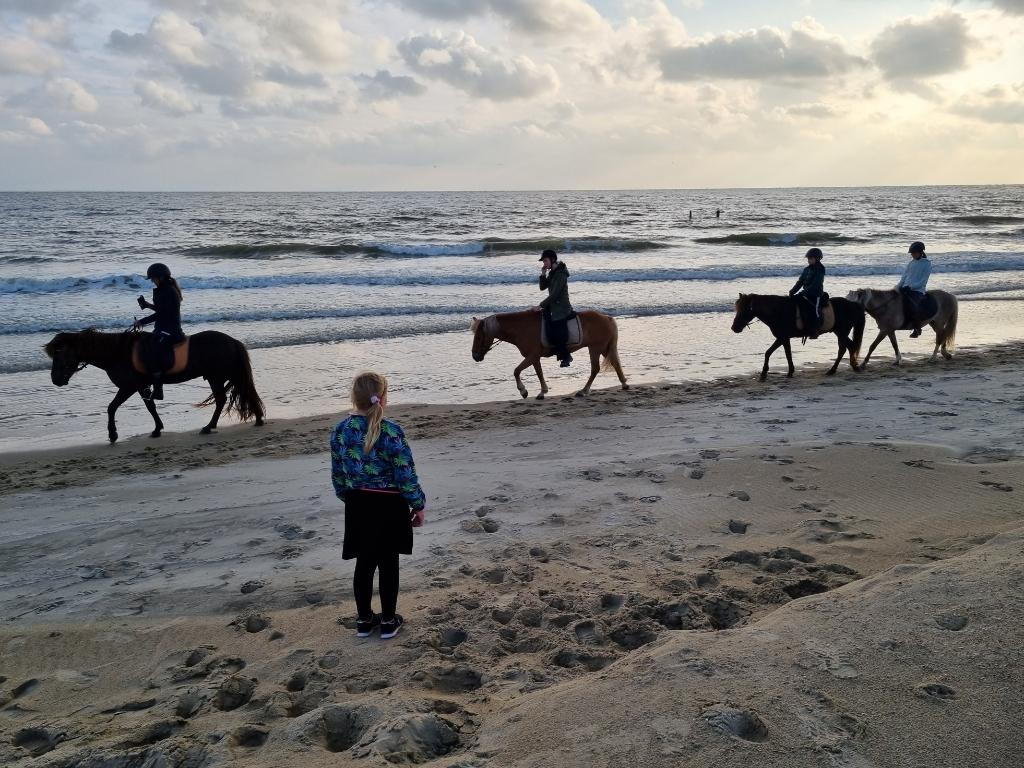 Deze foto is op 16 augustus op het strand van Zoutelande gemaakt. Mijn dochter Isabella hoopt dat ze later,  als ze meer ervaring heeft, ook paard mag rijden op het strand. Lizette van Veldhuizen © BDU media