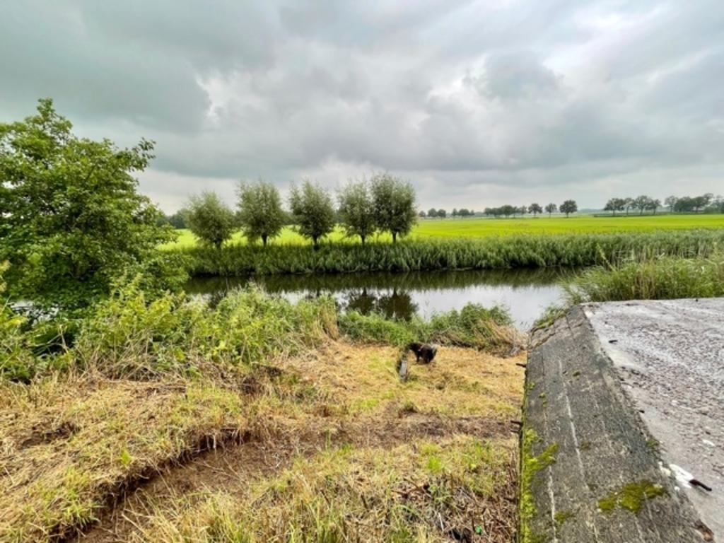 'Ook dit is helaas de zomer van 2021. Liniedijk. Mei en Roffel te Leusden.' Meiney Roffel © BDU media