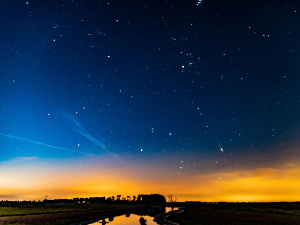 Vallende sterren in de Biesbosch Arie Jan van Termeij © BDU media
