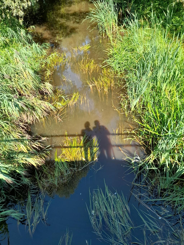 Even pauze op een bruggetje over de Slinge. Gelegenheid om prachtige libellen te spotten boven de waterspiegel van deze beek. De Slinge slingert door een prachtig natuurgebied in het Ruurlose Broek. Geschoten op een zonnige 25 augustus/ Jan Beitler © BDU Media