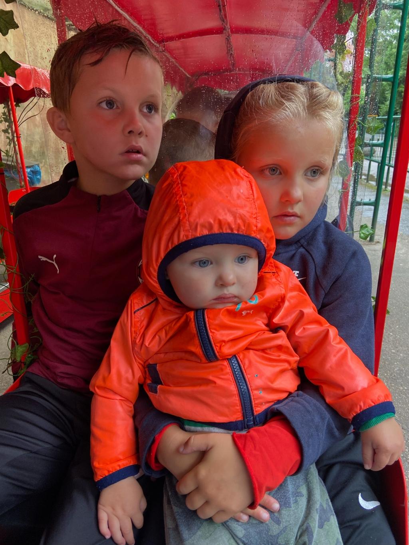 """,,Sky, Summer en Nox In dierenpark Amersfoort in het 'Berenboemel' treintje. Hun gezicht zegt genoeg ;)"""" Wendy Bouw © BDU Media"""