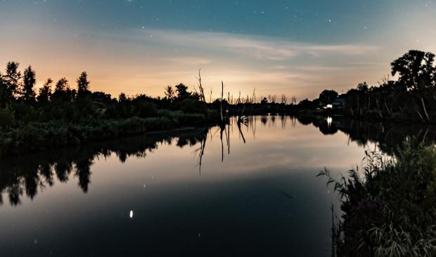 Vallende sterren in de Biesbosch