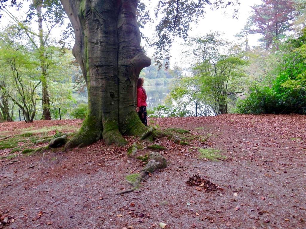 Mens en Natuur, een rustgevende beleving Onno Wijchers © BDU media