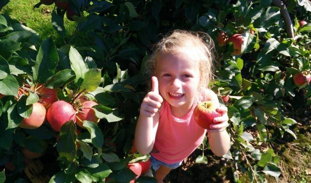 meisje plukt appels