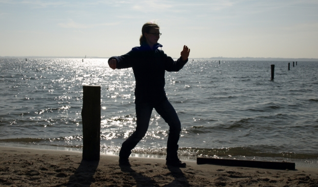 Tai Chi, enkele zweep beweging