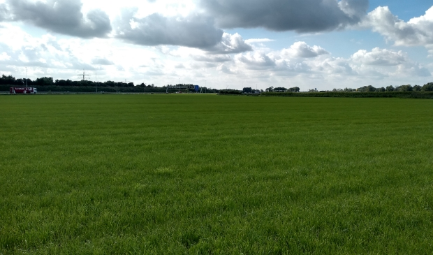 Het open gebied van de A12/ Spoorzone, ten noorden van de snelweg, waar een windturbine zou kunnen komen.