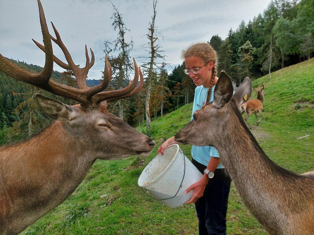 Op de foto de herten Ernie (links, met gewei) en Eva (rechts).  Twee dierenvrienden van Joanna die graag door haar overstelpt worden met aandacht en eten natuurlijk! ;-) Janet Groeneveld © BDU media