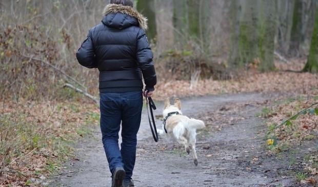 <p>Diverse gemeenteraadsfracties lieten weten te vrezen voor vooringenomenheid rond de voorgestelde hondenzonering. </p>