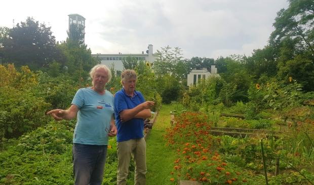 Jan Schakel en Gert van Maanen geven zondag samen met hun collega-moestuinders uitleg over de proefvakken.