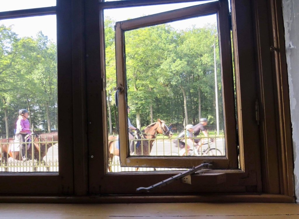 Vanuit de stallen zien wij passerende Amazones en Fietsers Onno Wijchers © BDU media