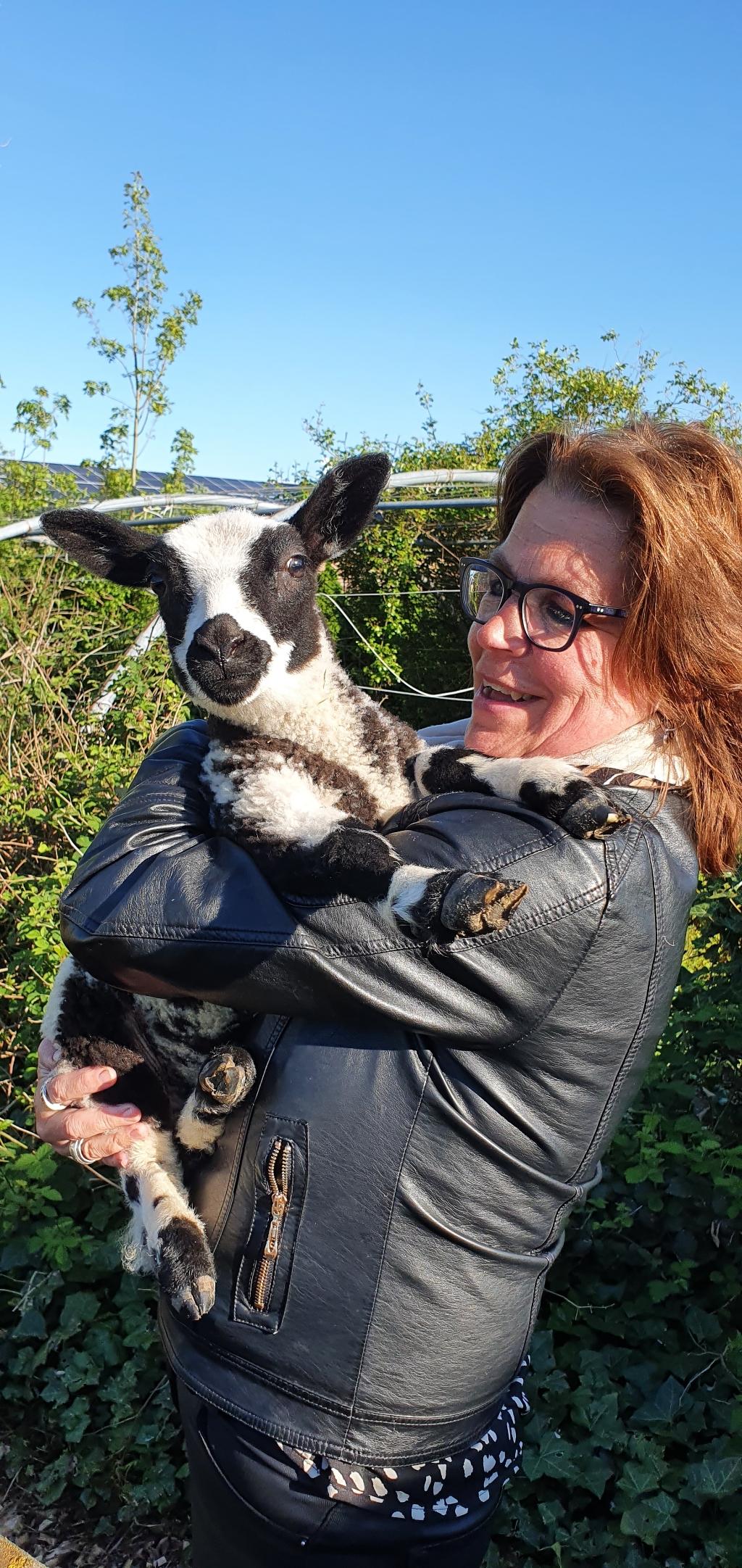 Bij ons thuis lijkt t ook een dierentuin met 2 schaapjes, pony, ezel, hond en 2 katten. Op de foto sta ik met Maria op mijn schouder. Toen nog een leplam...nu bijna een half jaar oud dus optillen lukt niet meer.  Annette Hoogerwaard © BDU media