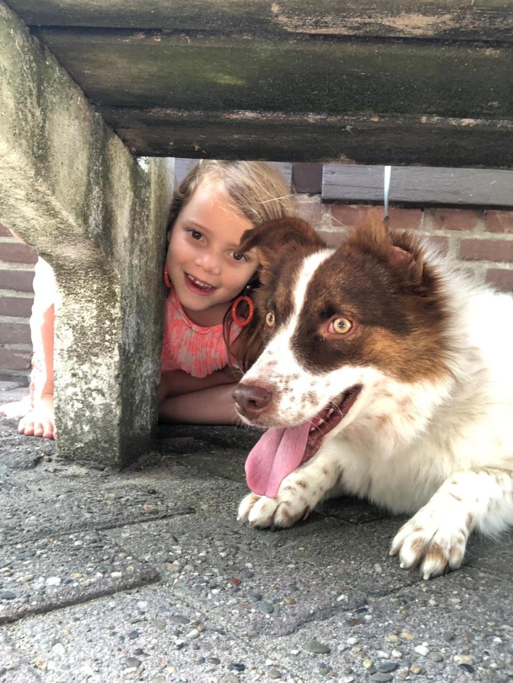 Hierbij een foto van mijn hond Robbie met mijn kleine vriendinnetje Nikki. Robbie is een bang hondje dus dacht Nikki, dan ga ik bij hem onder de bank zitten. Gezellig  Rietje Brink © BDU media