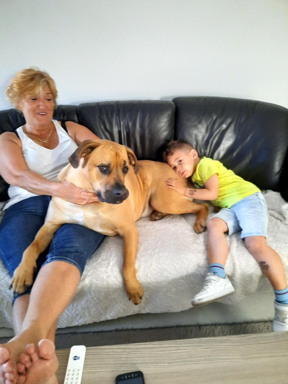 Na een boswandeling heerlijk bijkomen op de bank met mijn hond Tim en kleinzoon Tyrell. Fugen Pekdemir © BDU media