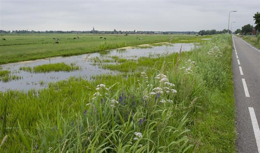 <p>Zuid-Holland heeft met bodemdaling te maken, ook in Nieuwerkerk. Hier ligt het laagste punt (bijna zeven meter onder NAP) van Nederland.</p>