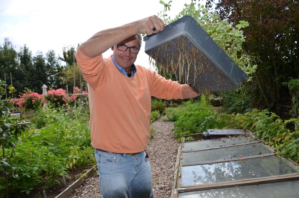 In de grondkassen worden volop nieuwe plantjes gekweekt.  © HvH Zuidplas