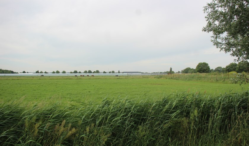 Het gebied waar de Vredenburghzone is bedacht. (Foto en tekst: Erik van Leeuwen)