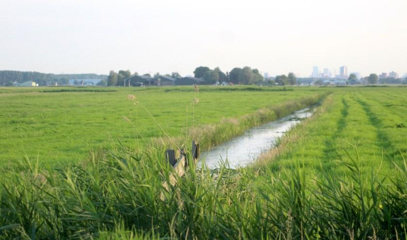 Alle raadsfracties hechten aan een groene schakel om zo het landschappelijke karakter van het nieuwe Zuidplas-dorp te behouden.