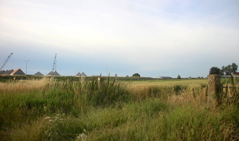Een deel van de Zuidplaspolder nabij het Koningskwartier waar de provincie en andere partners graag woningbouw zien.