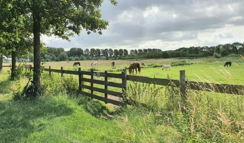 <p>In &lsquo;rustig klein dorpje&rsquo; Oud Verlaat ziet deze lezer al jaren het sluipverkeer toenemen. En de snelheid ook.</p>