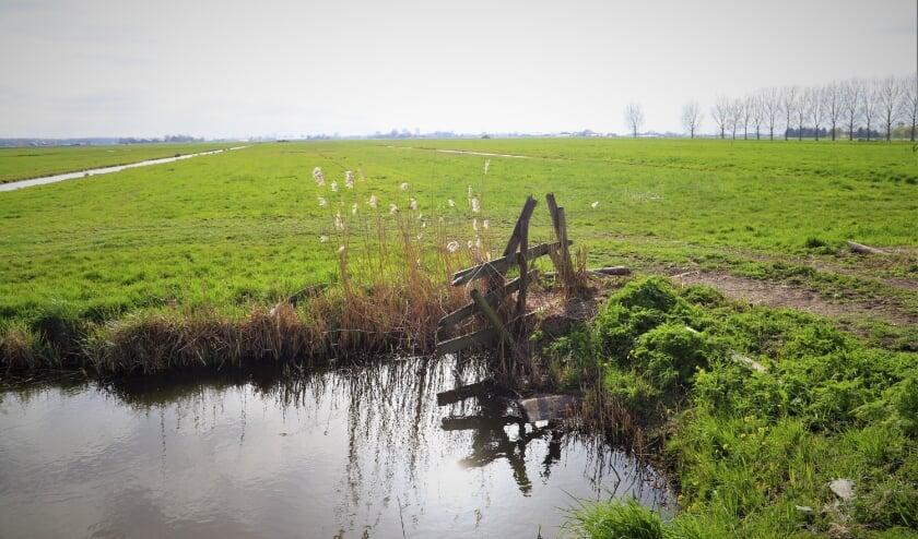 <p>De polder maakt plaats voor duizenden woningen, zo is deze maand besloten.</p>