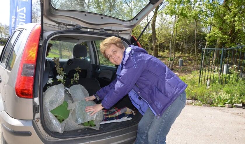 <p>Moeder en dochter Stougie vervoerden hun appelboompjes liggend naar Nieuwerkerk aan den IJssel. (foto en tekst: Judith Rikken)</p>
