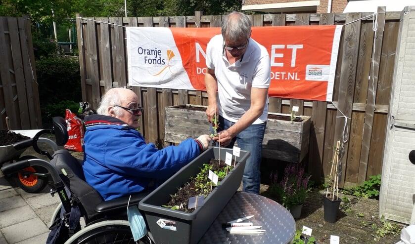 <p>Wethouder Daan de Haas hielp in Moordrecht bij het poten van groentestekjes.</p>