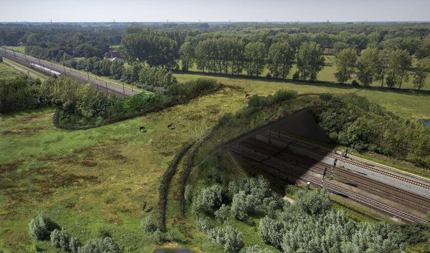 Een impressie van de natuurbrug, zoals die er uiteindelijk bij moet komen liggen. (Foto: ProRail)     Fotonummer: 0d103b