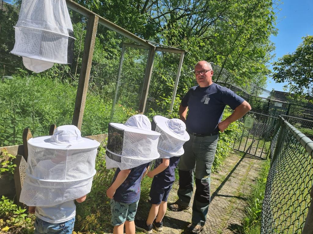 Kinderboerderij Boxtel, schapen, scheren, schapen scheren, bijen, imker, Kinderboerderij, apollopad,  Foto: Babette van Weert © MooiBoxtel