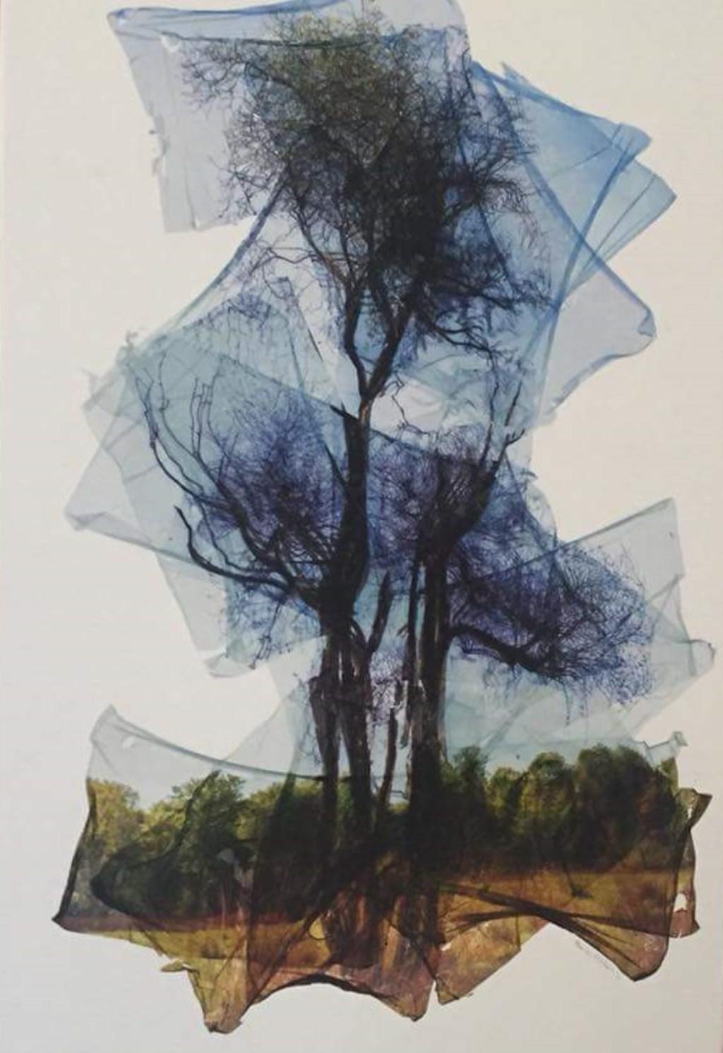 Werk uit de expositie van Maarten Ketelaars  © MooiRooi