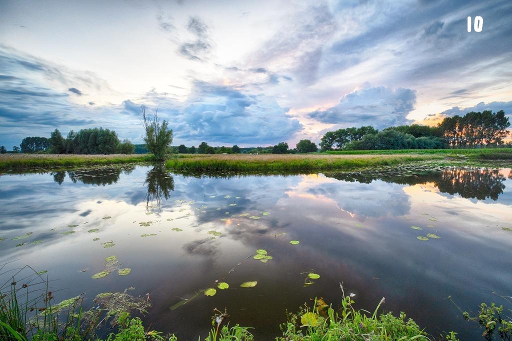 Foto; Henk van den Oever Foto:  © MooiRooi