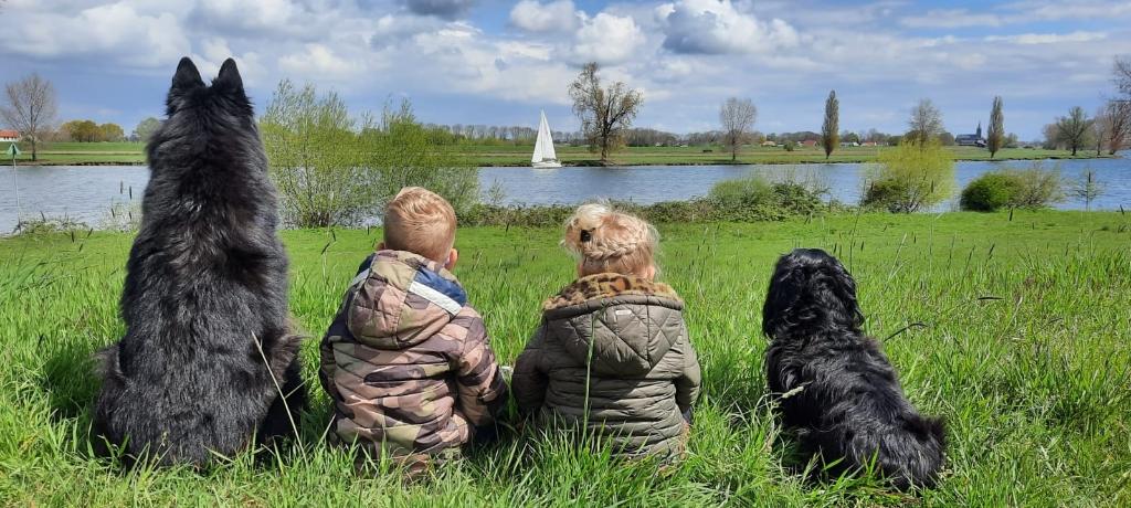 Onze twee kleinkinderen Luca en Elin vieren gewoon vakantie aan de Maas met hun vriendjes Zira en Bailo. Foto: Wilma van Roosmalen Foto:  © MooiRooi