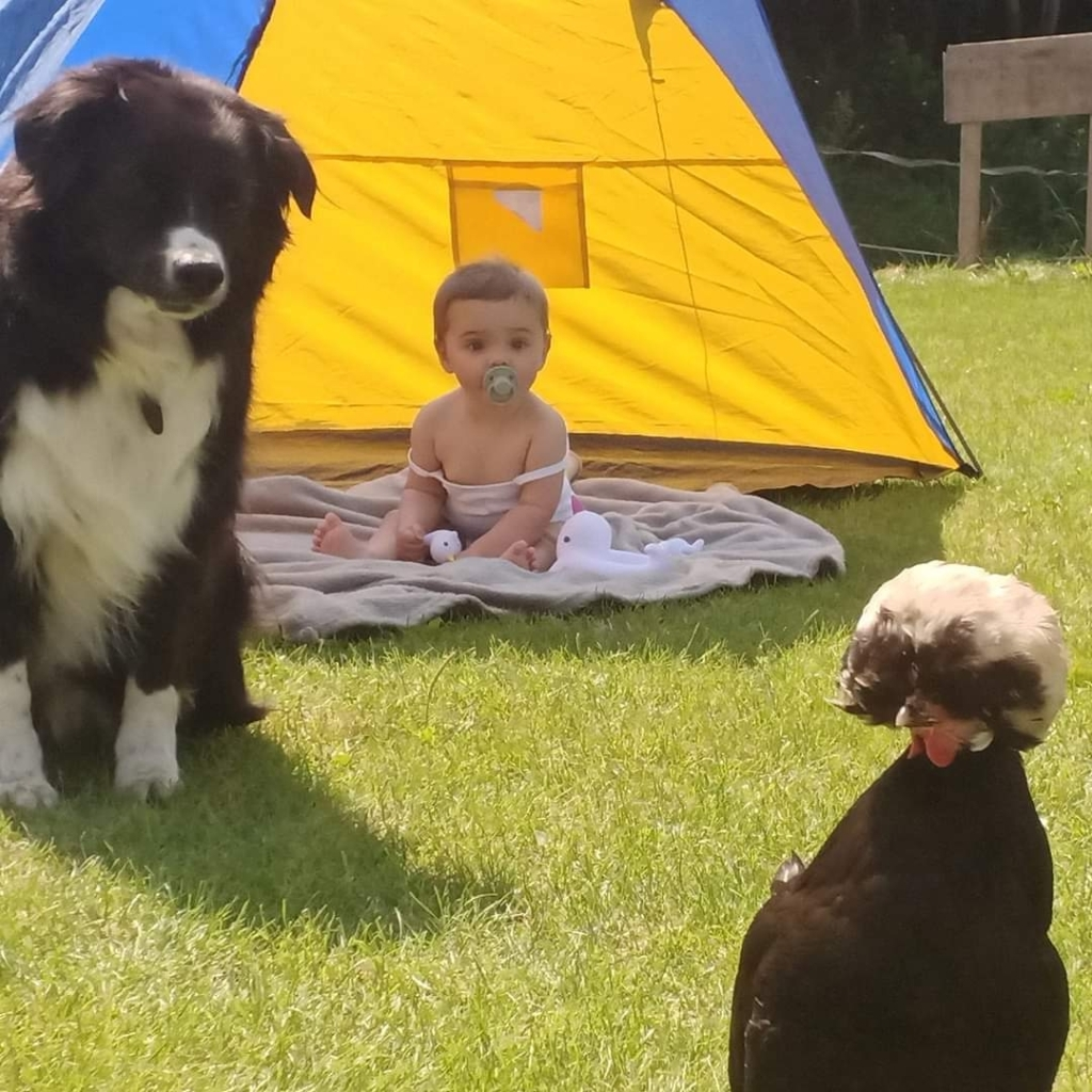 Noa Oppers viert thuis vakantie. Samen met de dieren is dat heel gezellig. Foto:  © MooiRooi