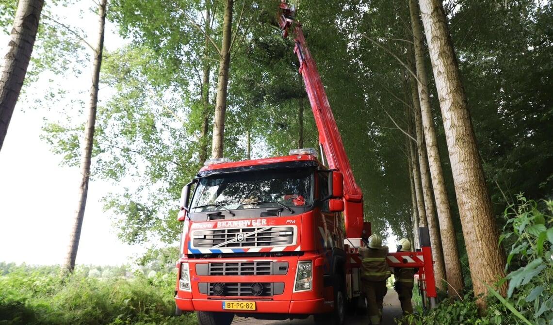 Broekdijk brandweer boomtop