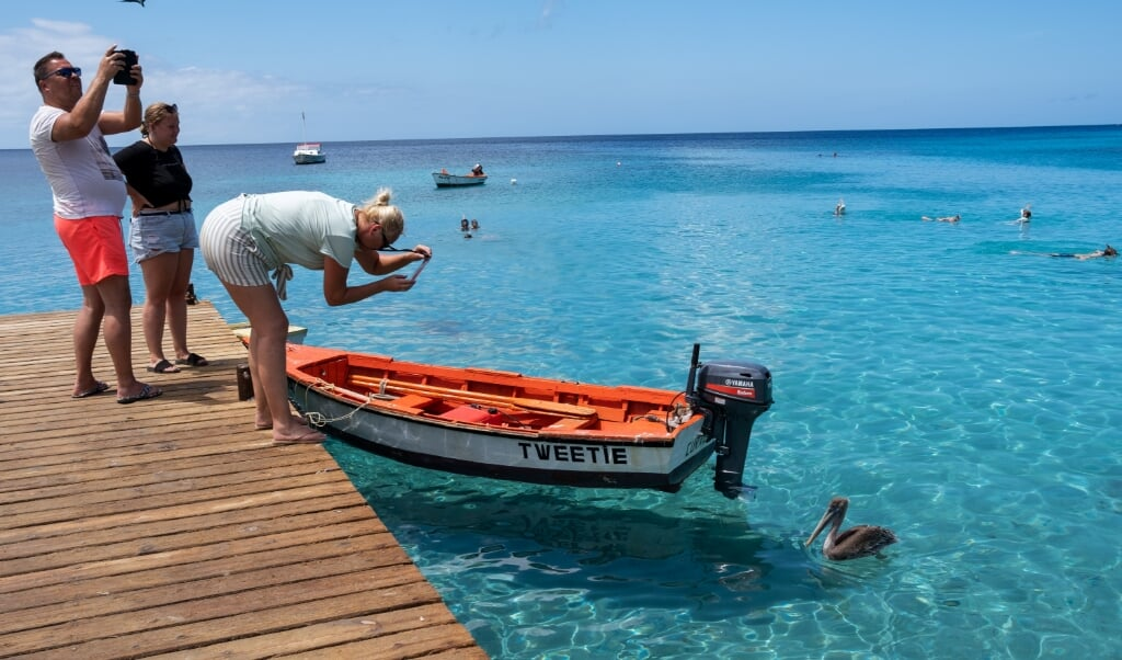 Playa Piskadó is in trek bij vogels, snorkelaars en badgasten.   (beeld Sabine van Wechem)