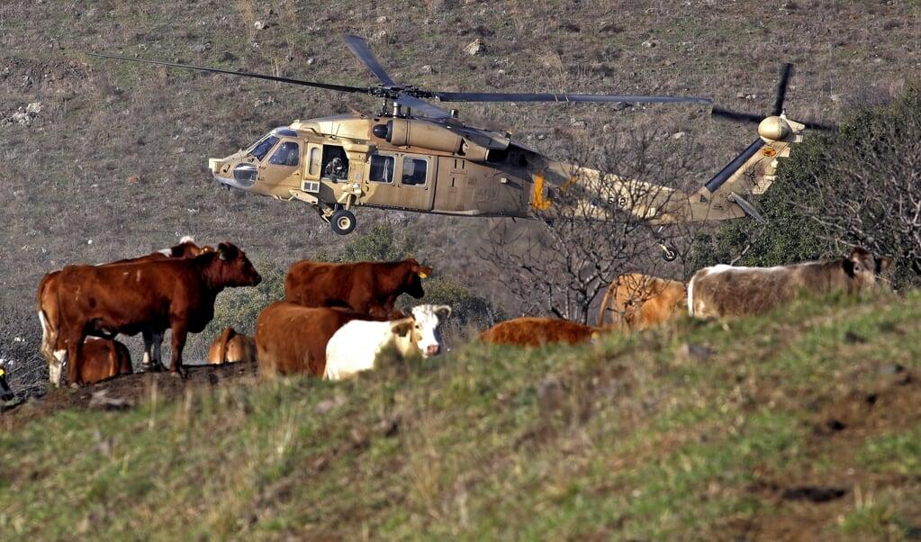 Een Israëlische Blackhawk-helikopter met aan boord VS-minister Mike Pompeo landt op de Golan-hoogvlakte.  (beeld afp / Jalaa Marey)